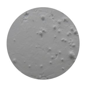 Pigment C01
